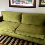 pesto velvet couch
